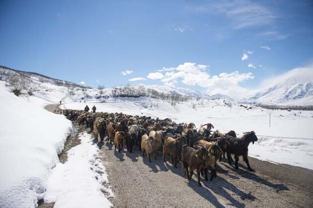 Tunceli'nin bir yanında bahar diğer yanında 'kara kış' yaşanıyor