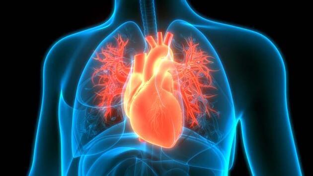 Kalp ağrısının 5 önemli nedeni! Aklımıza ilk olarak 'kalp krizi' geliyor, ama...