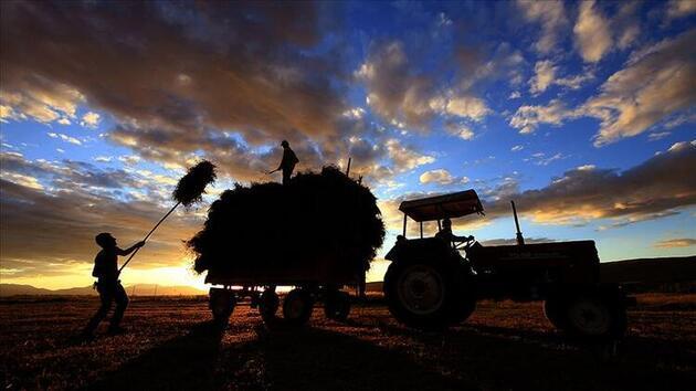 Yeme-içme sektörüyle ilgili yeni düzenleme! İki aylık primini devlet ödeyecek