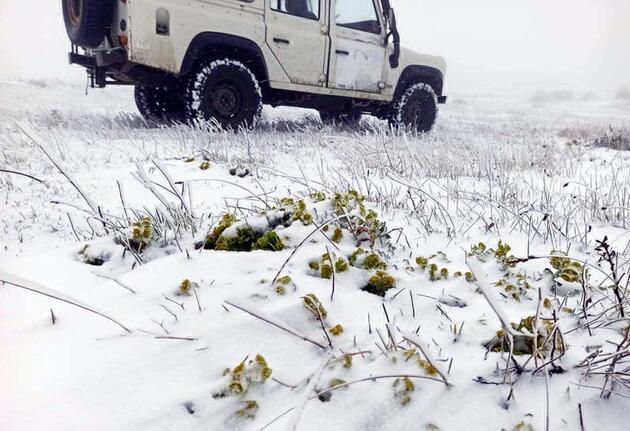 Balkanlar üzerinden gelen kar ile Trakya beyaza büründü