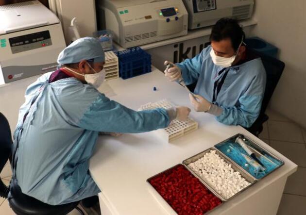 'Yerli aşıda Faz-3'e geçilmesinde sıkıntı yok'