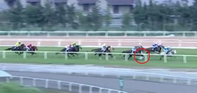 Yarış sırasında attan düşmüştü! Durumu ciddiyetini koruyor