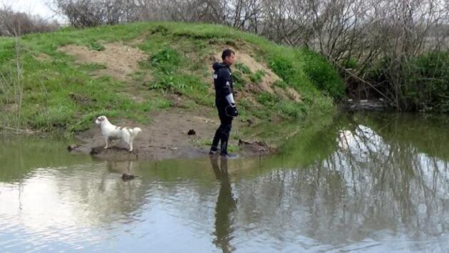 Nehirde aranan yaşlı adamın beslediği köpek, bir an olsun bölgeden ayrılmadı