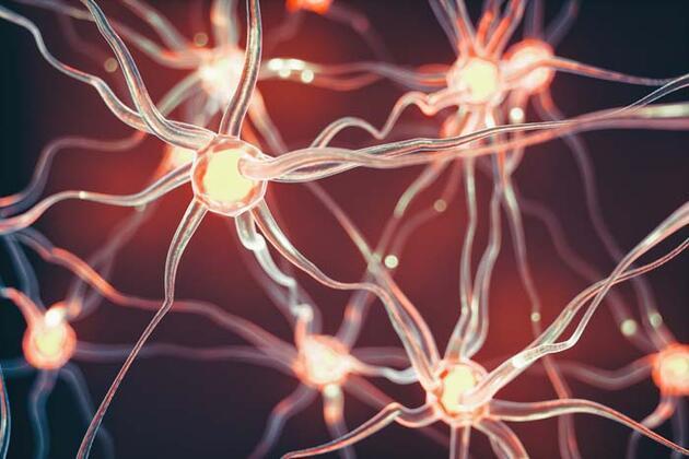 Beyin tümörlerinin 5 kritik belirtisi! Vücutta böyle sinyal veriyor