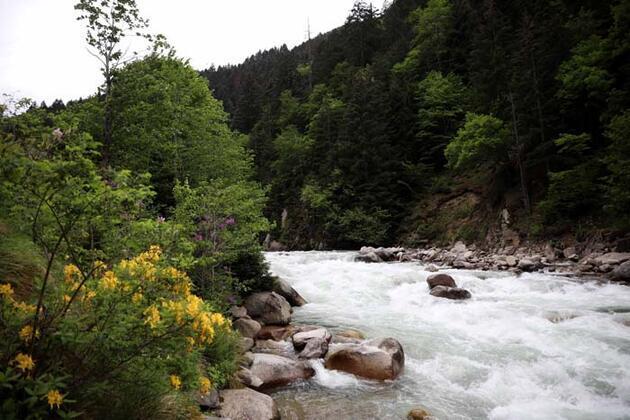 Salgında doğa tatili arayanların uğrak noktası oldu! O bölgede rezervasyonlar arttı