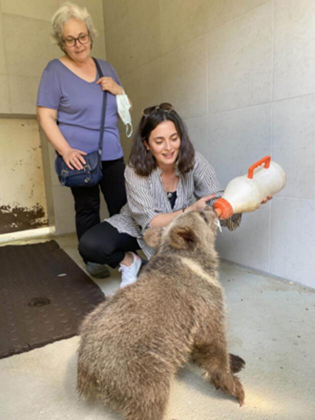 Oyuncu Aslıhan Gürbüz, yavru ayıyı biberonla besledi