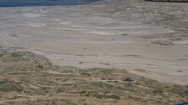 Lodos, Gemlik Körfezi'ndeki müsilajın yoğunlaşmasına neden oldu