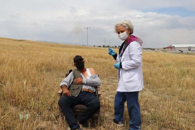 Tarım işçilerine tarlada aşı