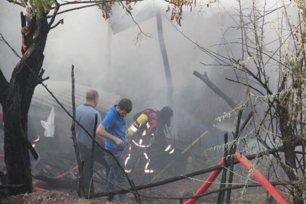 Yangında alevlerin arasında kalan kaplumbağayı itfaiye eri kurtardı