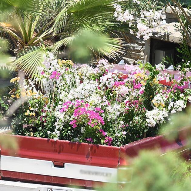 Sezen Aksu'ya kamyonetle gelen çiçek akılları karıştırdı