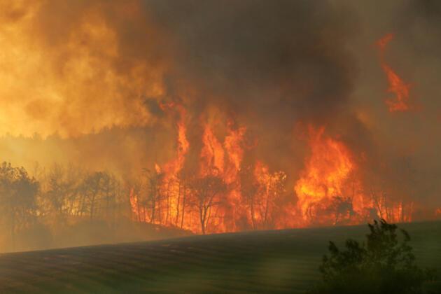 SON DAKİKA HABERİ: Osmaniye'de korkutan yangın!