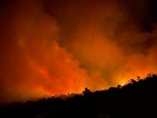 Muğla'nın Fethiye ilçesinde korkutan yangın! Molotof kokteyli atıldığı iddia edildi