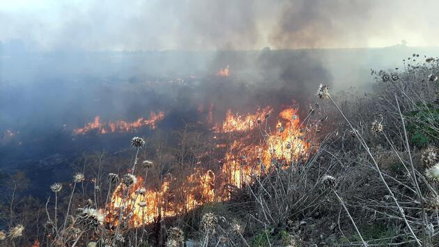 Edirne'de otluk alanda çıkan yangın büyümeden söndürüldü