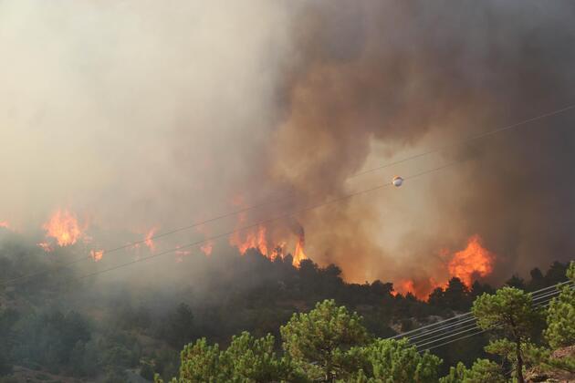 Orman yangınlarıyla mücadele sürüyor: İşte saat saat yangınlarda son durum