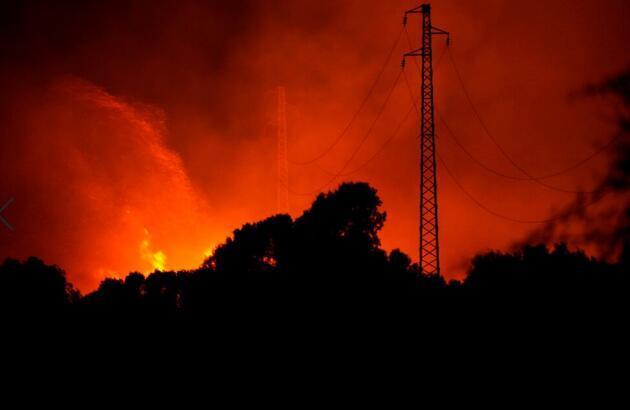 Dünya küle dönüyor: 40'a yakın ülke alevlerle boğuşuyor