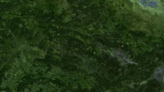 Orman yangınları uydudan böyle görüntülendi