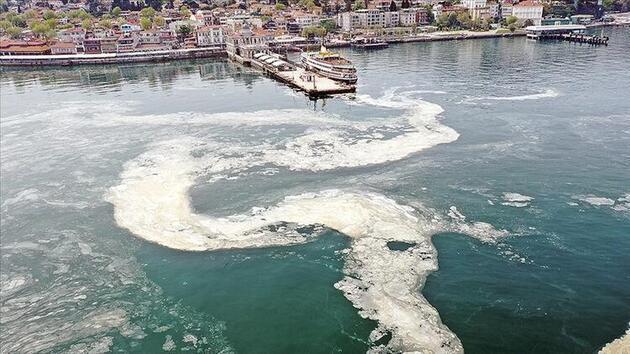 Marmara'da korkutan tehlike: Koloniyal müsilaj