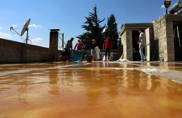 Ustası lezzetli pekmez ve pestilin sırrını anlattı! Gaziantep'te pekmez ve pestil telaşı