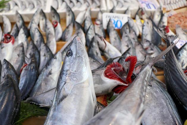 Uzman isimden uyarı: Esmer etli balıklara dikkat