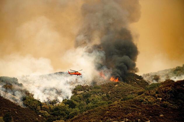 California'daki yangınlarda itfaiyeciler dünyanın en büyük ağacını kurtarmaya çalışıyor