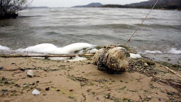 Dünyayı en çok kirleten ülke açıklandı