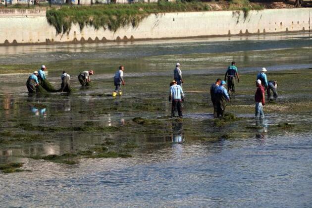 Yosunlardan temizlenen Seyhan Nehri, eski güzelliğine kavuştu