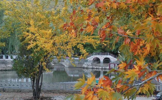 Orta Toroslar sonbahar renklerine büründü! Seyrine doyumsuz manzaralar