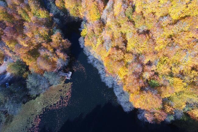 Bolu ve Düzce'de büyüleyen doğa görüntüleri!