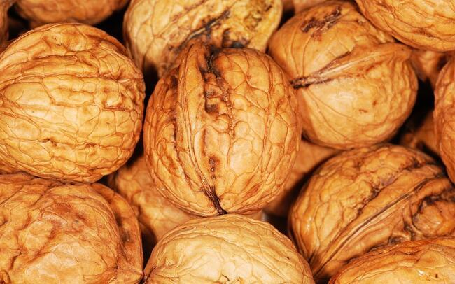 Beyin hücrelerini yenileyen, hafızayı güçlendiren süper besinler!