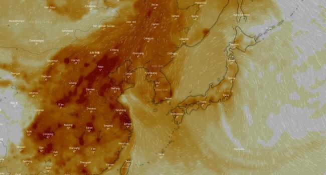 Karantina altındaki Wuhan'da ürküten harita: Bulut gibi çöktü!