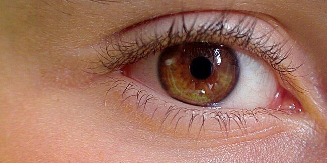 Göz sağlığına iyi gelen besinler
