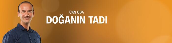 Doğanın Tadı - CNNTürk TV
