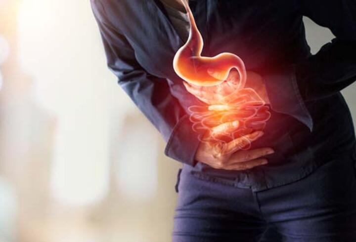 Bağırsaklar ruh sağlığını etkiliyor