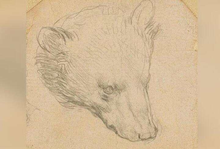Leonardo da Vinci'nin çizimi servet değerinde satılacak
