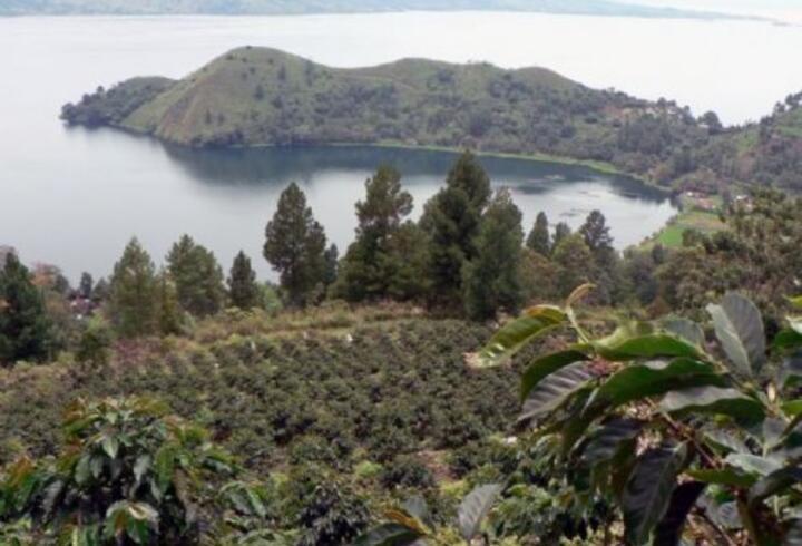 Sumatra Adası Nerede, Nasıl Gidilir? Sumatra Adası Hakkında Bilinmesi Gerekenler