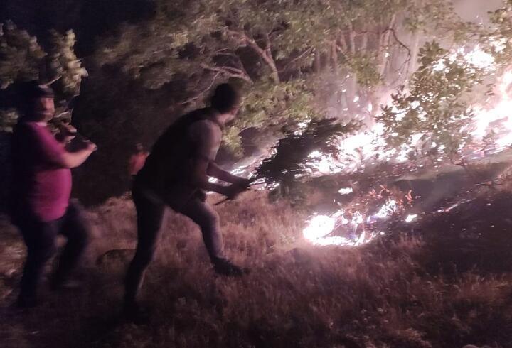 Bingöl'deki orman yangınları kontrol altına alındı