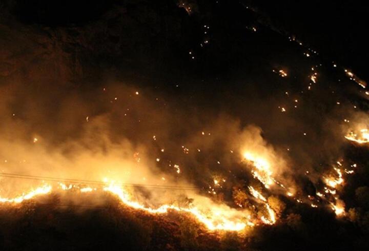 Şemdinli'de orman yangını! Ekipler müdahale ediyor