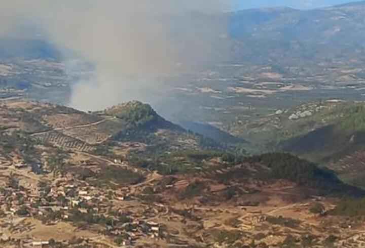 Son dakika haberi: Balıkesir'de orman yangını