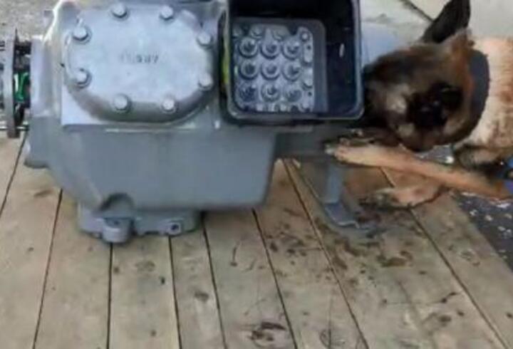11 kilogram kokaini hava kompresörünün içine saklamışlar
