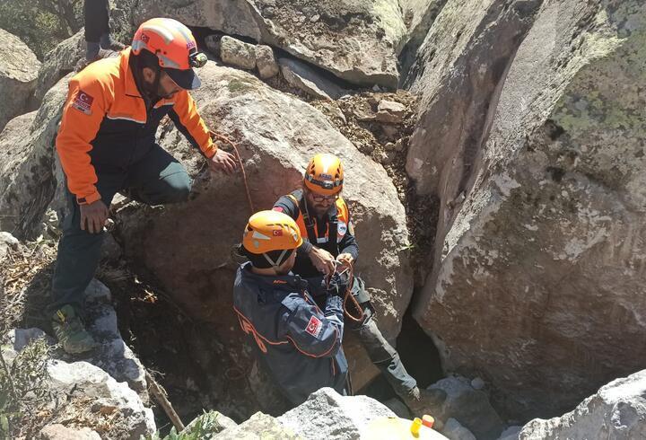 Mahsur kalan oğlağı AFAD ekipleri kurtardı