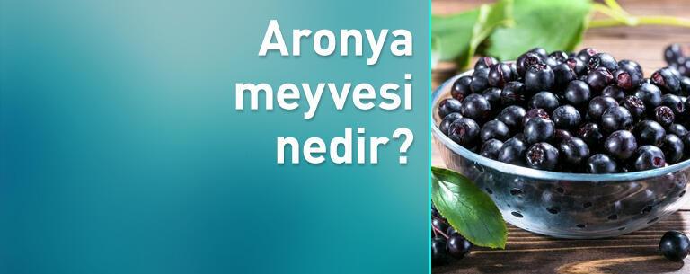 Aronya meyvesi nedir, hangi hastalıklara iyi gelir?