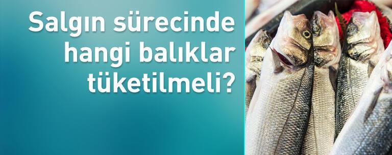 Koronavirüs sürecinde hangi balıklar tüketilmeli!