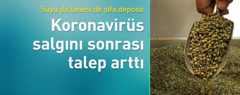 Koronavirüs salgını sonrası talep arttı