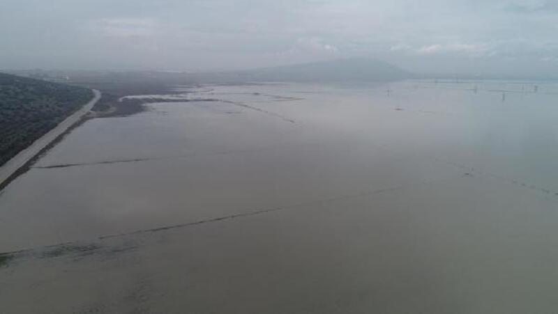 Menderes Nehri taştı, tarım arazileri göle döndü