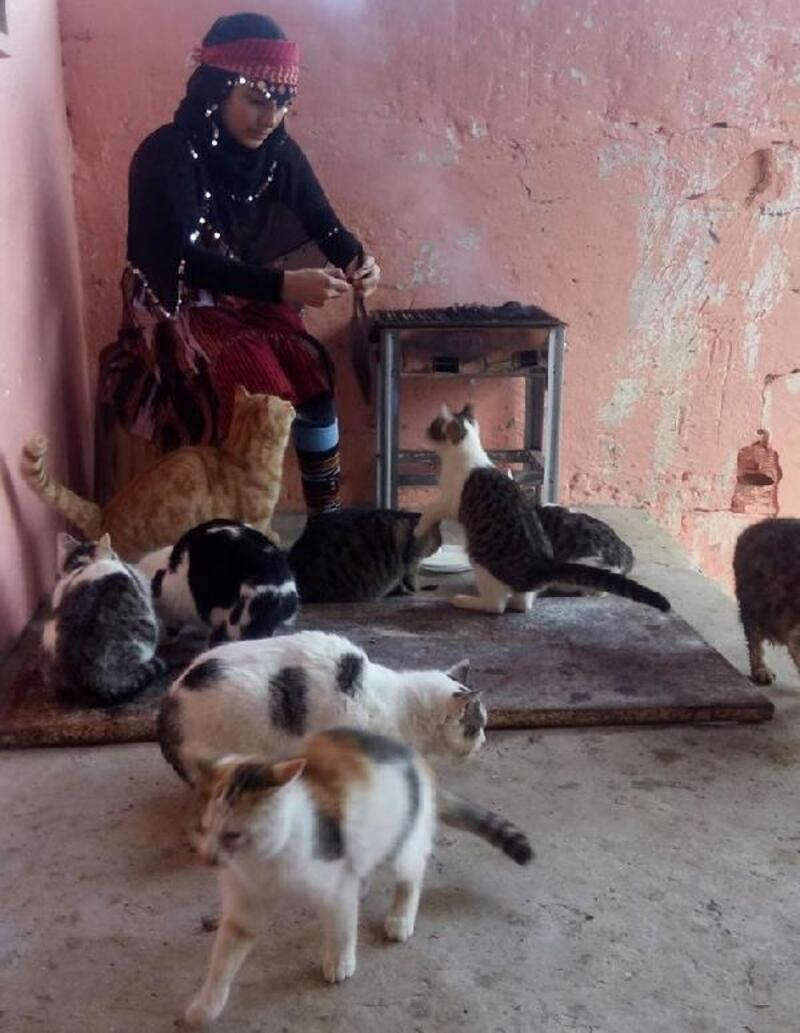 Hamdu Sena, aç kalan kedileri mangalda et ve sucukla besledi