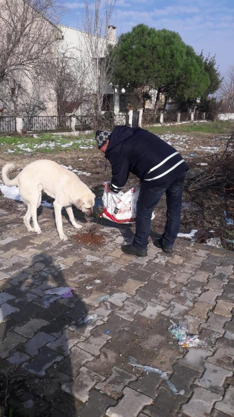 Belediyeden sokak hayvanlarının kışın beslenmesi konusunda uyarı