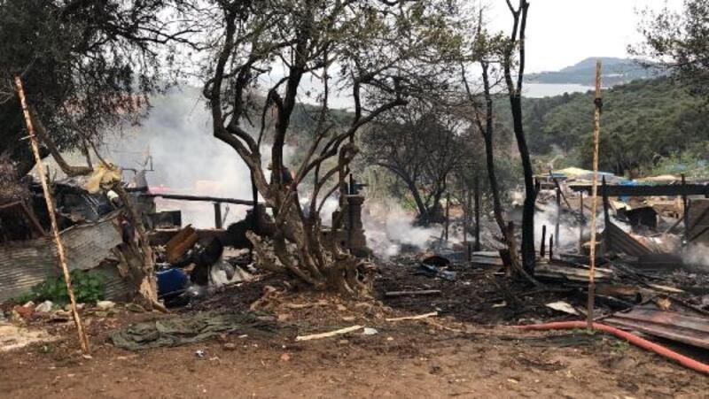 Büyükada'da ormanlık alanda yangın