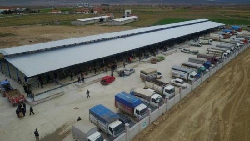Hayvan pazarı, hastalık yüzünden 3 hafta kapatıldı