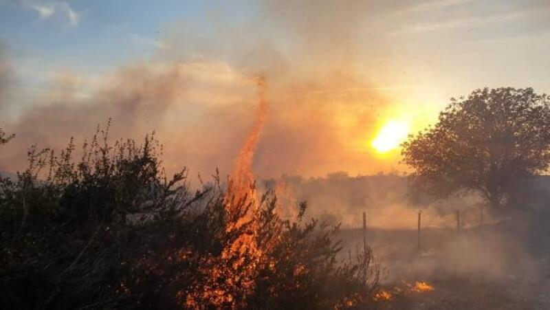 Kadirli'de makilik alanda çıkan yangın ormana sıçradı