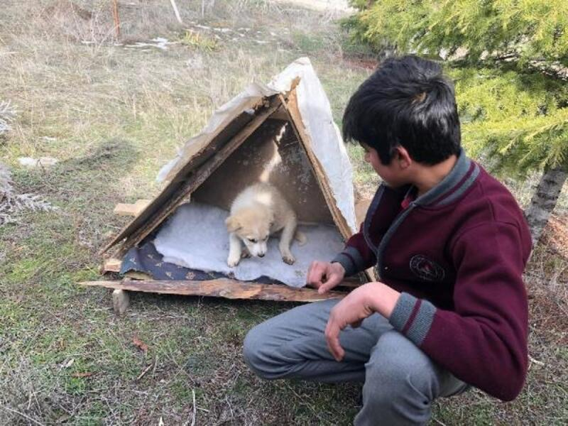 Öğrencilerden hayvanlar için kulübe